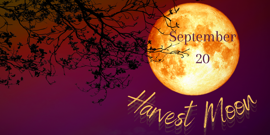 Harvest Moon September 20, 2021 Large orange moon. The Sept moon is often referred to the Corn Moon. This year, because it falls right before Mabon (Autumnal Equinox) it is considered the Harvest Moon